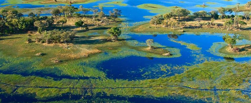 Cali4travel Zambia