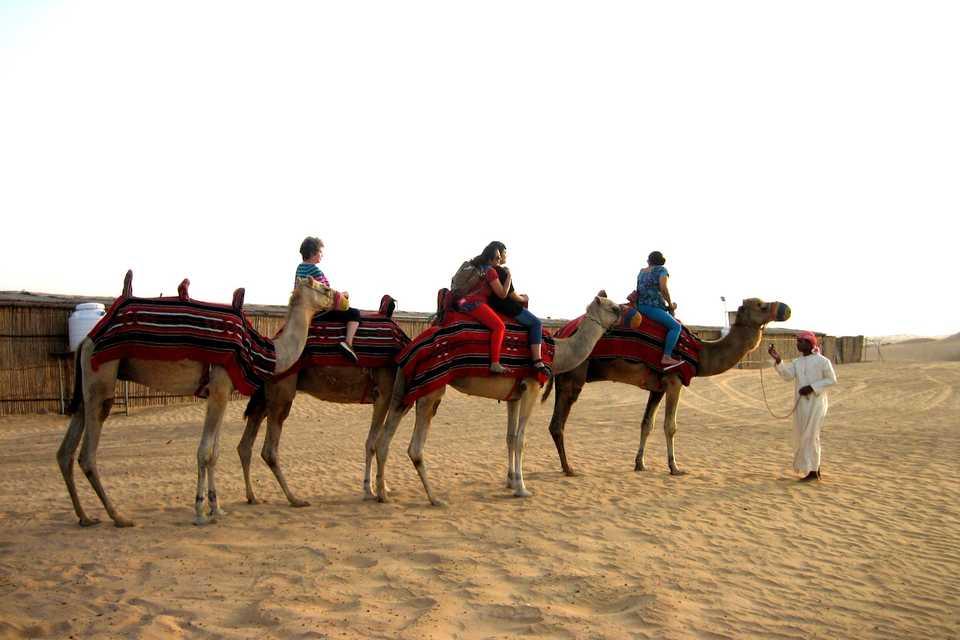 Cali4travel - DUBAI – SAFARI